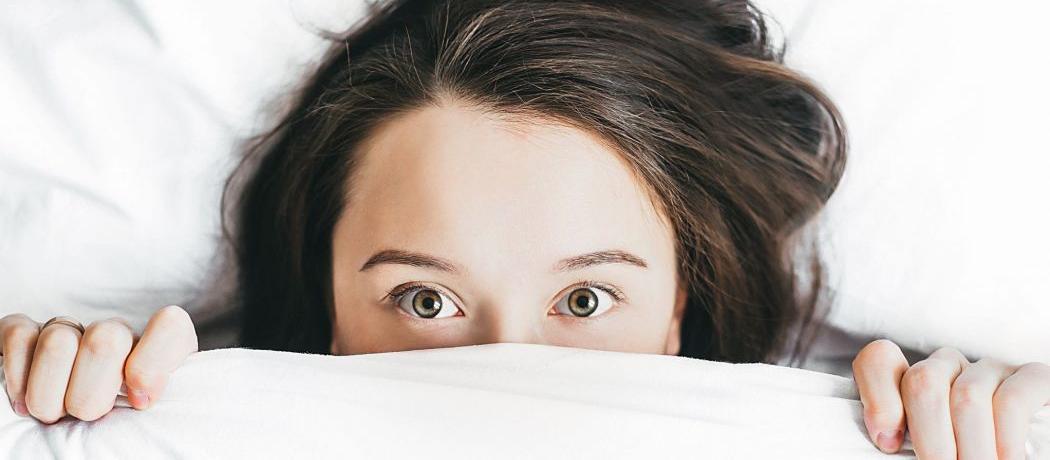 Le moustique, ennemi n°1 de notre sommeil