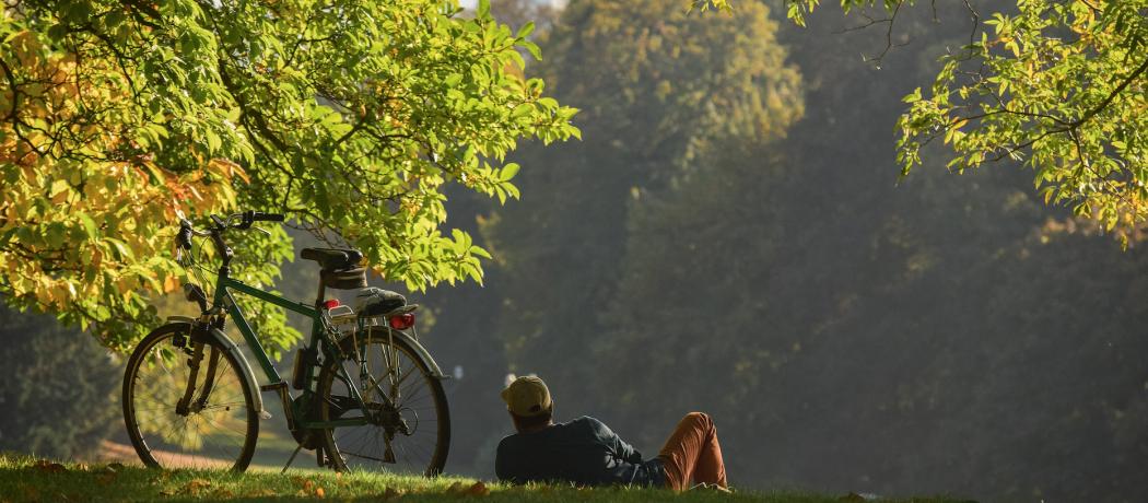 10 idées de balades pour profiter du grand air en Belgique