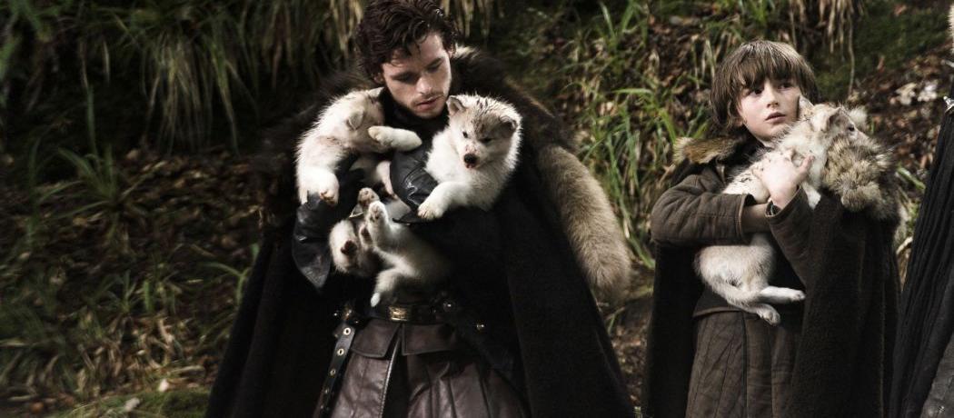 5 anecdotes autour des loups de Game of Thrones