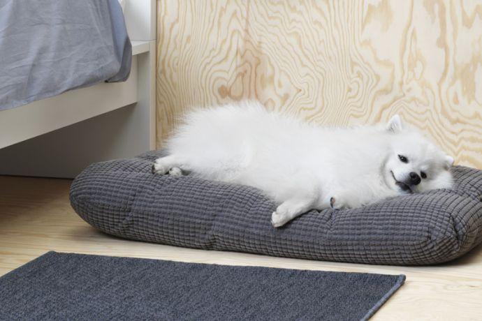 La Collection D Ikea Pour Nos Animaux Sera Disponible La Semaine