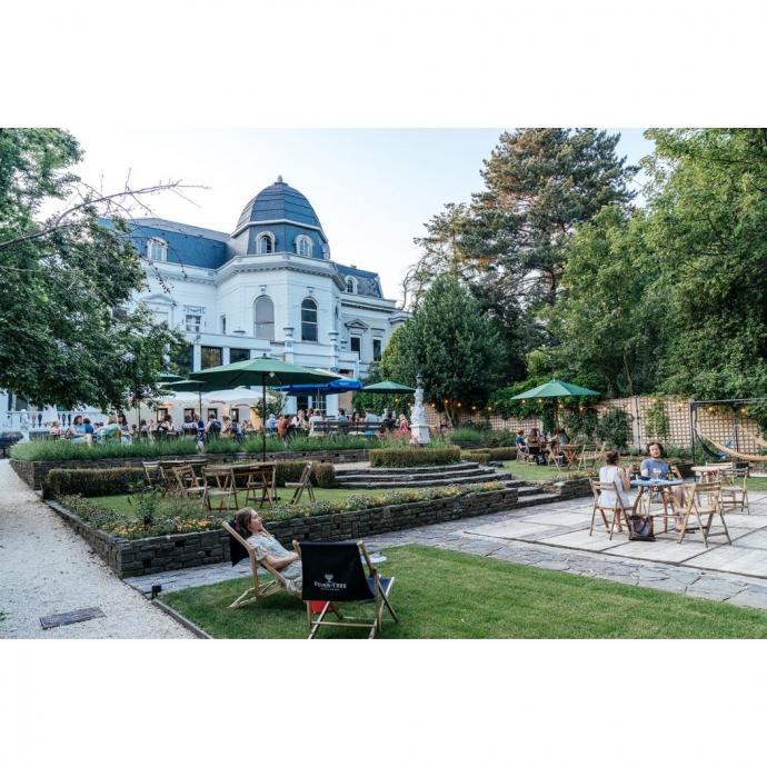 Thé blanch Yuzu, Thés de la Pagode, 15,90€ pour 100g.