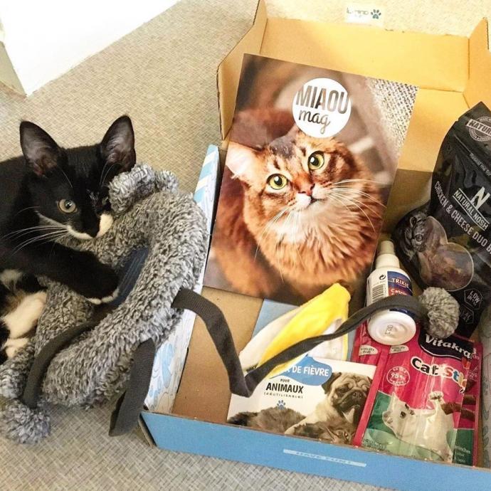 Offrez-lui la surprise de sa vie avec une box mystère ! Dans cette box un peu spéciale, on retrouve 6 produits adapté à votre chaton : Jeux d'adresse, jouet à câliner, nourriture, soins & hygiène, friandises, accessoires. Vous pouvez prolonger le plaisir en choisissant un abonnement au choix.