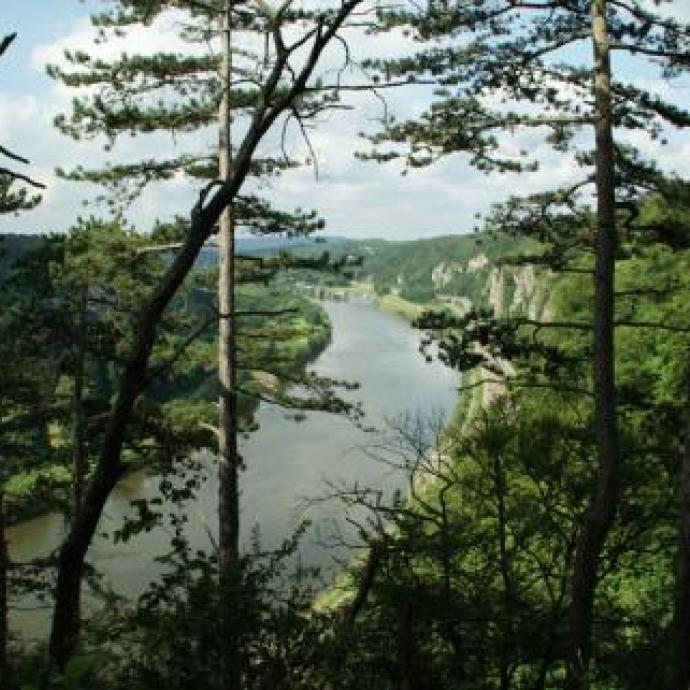 """Changement d'air assuré avec cette balade au sommet des roches de Marches-les-Dames. Au programme une promenade de 6.5 km et une autre de 8 km, de quoi satisfaire les fans de randonnées. / <a href=""""http://www.marchelesdames-wartet.be"""">www.marchelesdames-wartet.be</a>."""