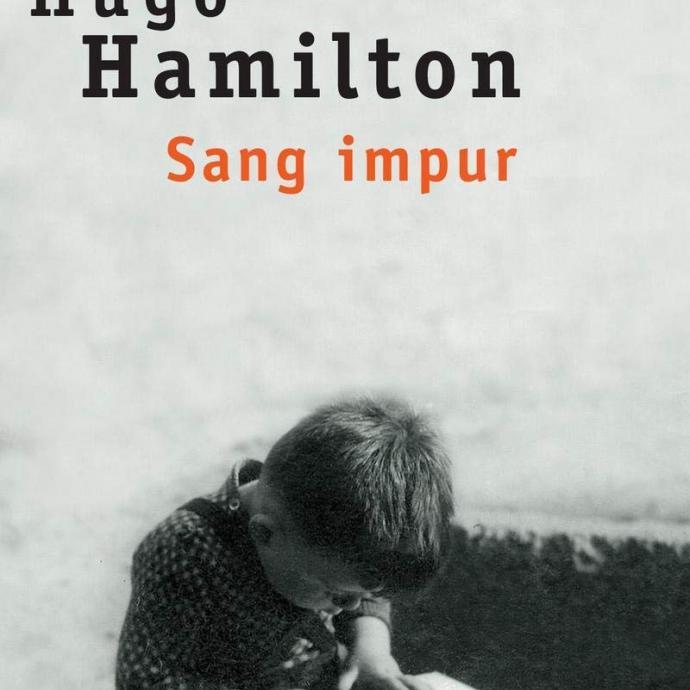 Ce journaliste irlandais reconverti dans la litt&eacute;rature ancre plusieurs de ses romans &agrave; Dublin, entre autres les r&eacute;cits policiers <em>D&eacute;jant&eacute;</em> et sa suite <em>Triste flic</em>, mais aussi, ses m&eacute;moires, <em>Sang impur</em>, qui &eacute;voque son enfance dans le Dublin d&rsquo;apr&egrave;s-guerre.