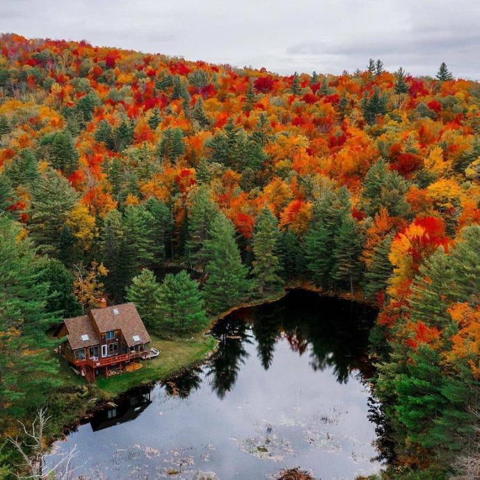 Au coeur d'une forêt dans le Vermont.