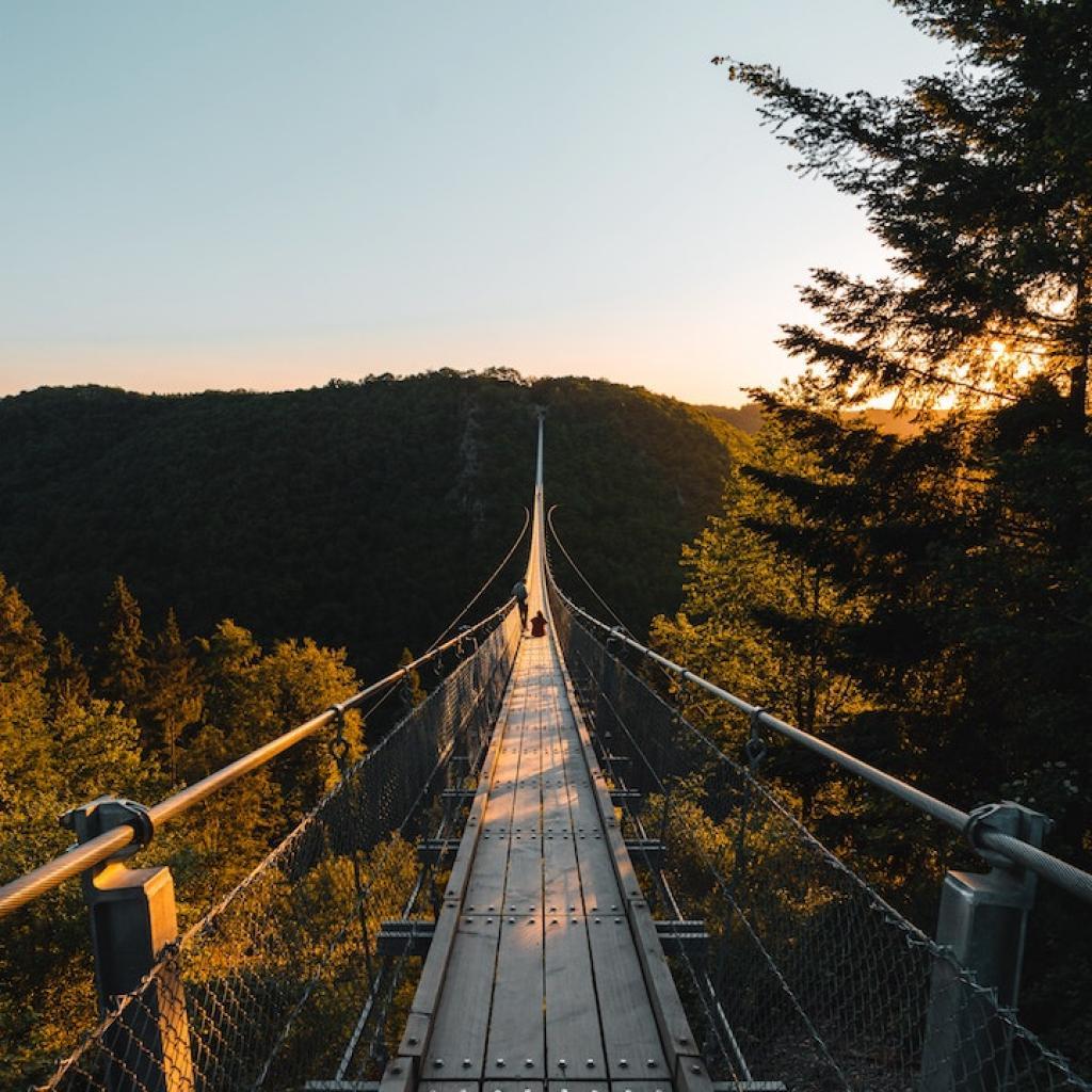 Le pont Geierlay attire chaque annee les amateurs de balades et de .. frissons !