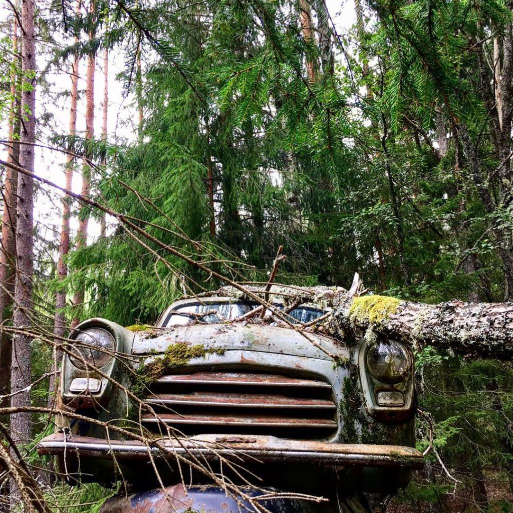 Sur ces lieux, on retrouve plusieurs restants de voitures, pourtant personne n'a voulu les exposer là. Ce cimetière serait-il la conséquence de plusieurs accidents de voiture ? C'est en tout cas la théorie de certains !