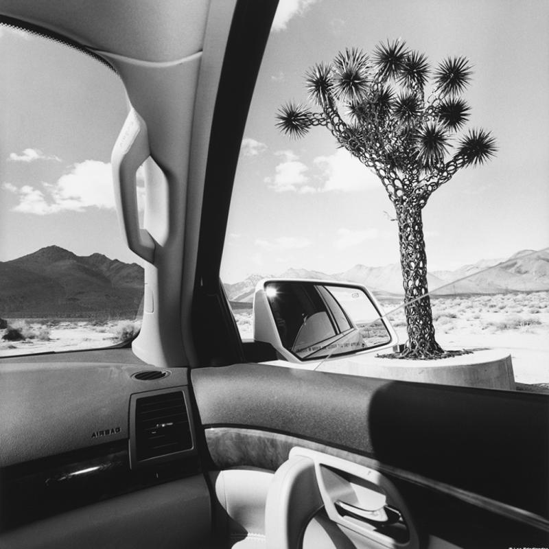 Lee Friedlander, California, série America by Car, 2008.