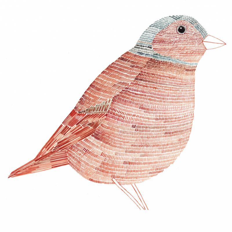 In the Wilds, publié en 2011, est l'un des ouvrages du dessinateur qui a rencontré le plus succès. Il y conte la vie simple dans sa campagne natale et égrène avec poésie le fruit de ses observations : faune, flore, paysages et équipements agricoles.