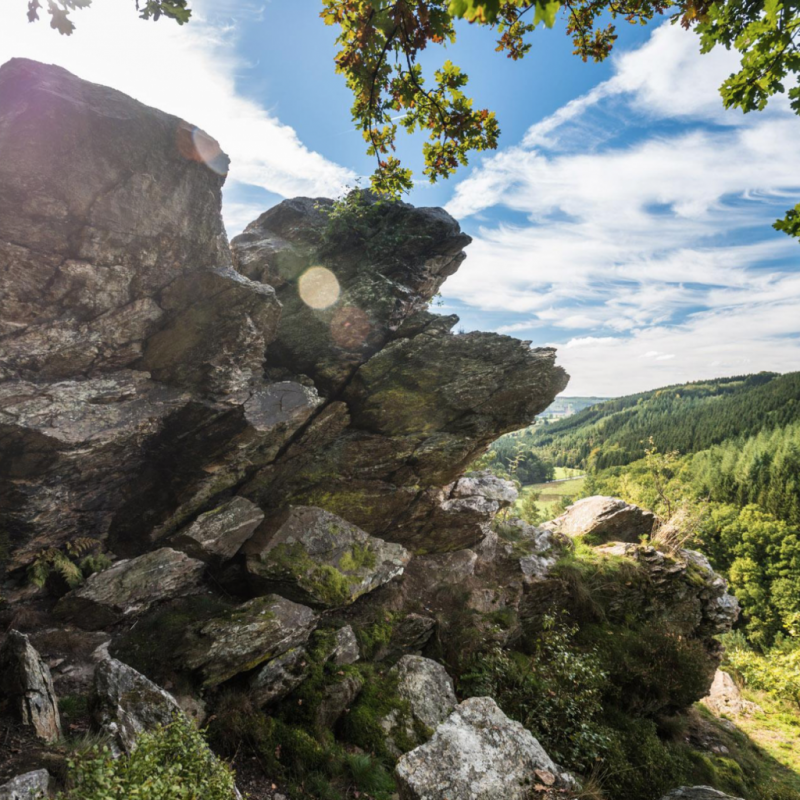 """Située dans les Cantons de l'Est, du côté de Malmedy, la balade de rêve à Bellevaux est une randonnée de 7.8 km qui vous fera découvrir un paysage saisissant. / <a href=""""http://www.ostbelgien.eu"""">www.ostbelgien.eu</a>."""