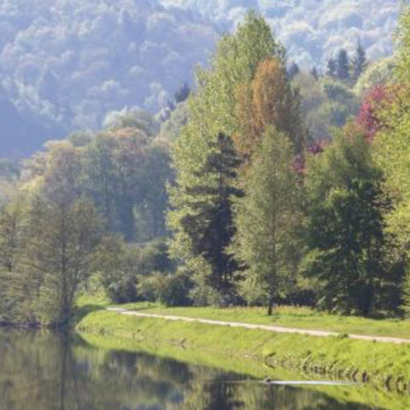 Avec un parcours minimum de 3.5 km, la balade de la boucle de l'Ourthe, située du côté de Rendeux, convient tout aussi bien aux sportifs qu'aux familles. En effet, il existe un circuit adapté à chaque visiteur. / ww.walloniebelgiquetourisme.be