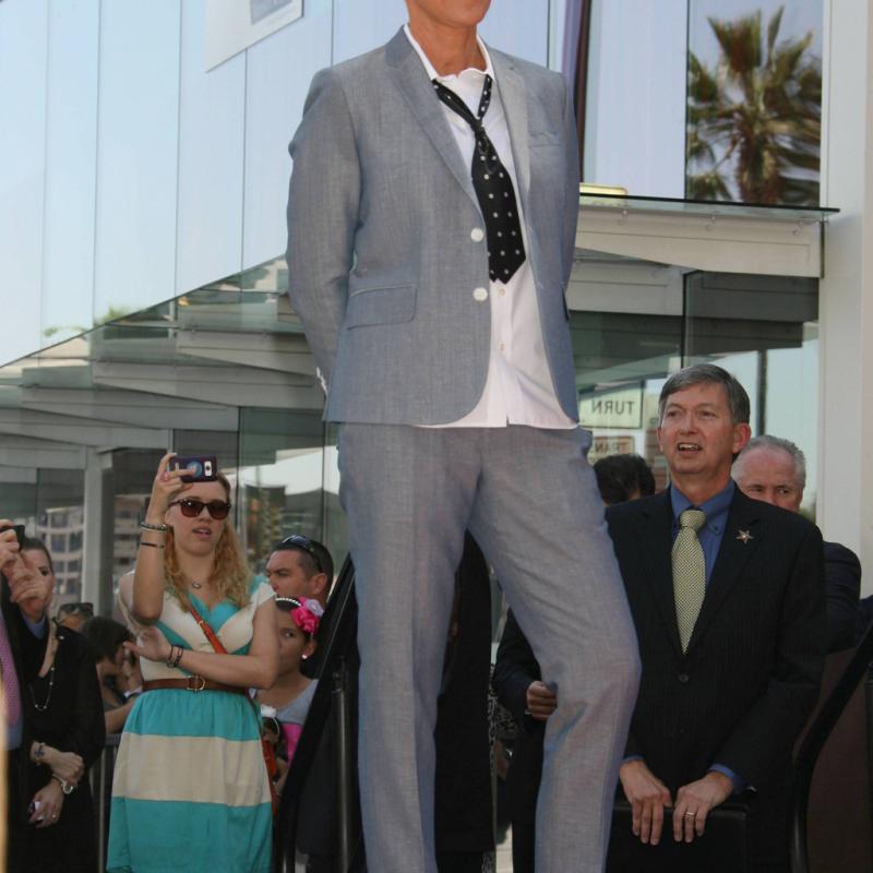 Ellen DeGeneres, animatrice d'un talk show américain à grand succès, est assurément porte-drapeau du masculin féminisé porté à la ville.