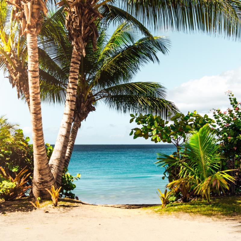 Pour relancer l'économie de son île enfin remise sur pieds.