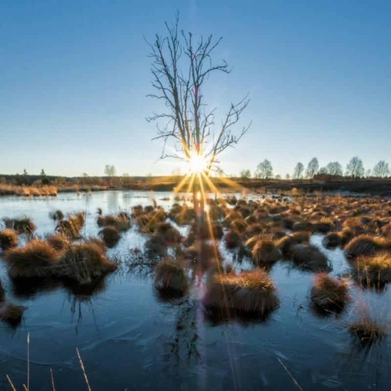Ce Parc naturel s'étendant sur 70 000 ha en Belgique, et sur 170 000 ha en Allemagne, constitue l'une des plus belles régions de notre royaume. Outre les paysages variés qu'offre cette réserve naturelle, les lacs d'Eupen, de La Gileppe et de Bütgenbach figurant parmi les cinq plus grands plans d'eau intérieurs du pays, sont devenus l'un des pôles d'attraction touristique les plus importants de la région. Et pour cause, ils nous transportent totalement hors du temps. Dépaysement et zen attitude garantis ! © Robert May (Facebook: robertmayphotography)