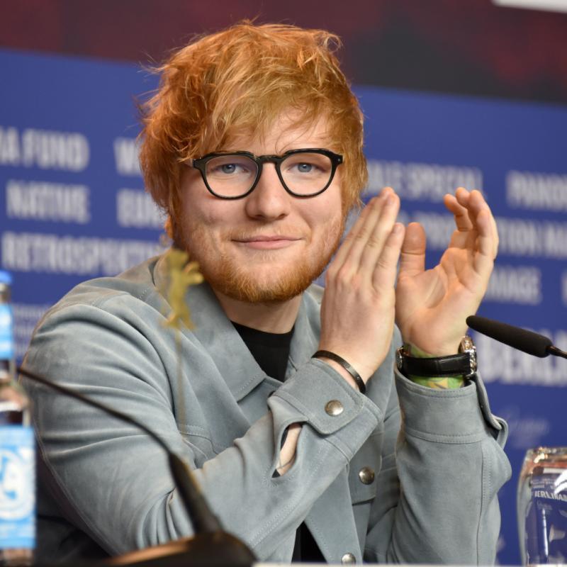 Le cadet de notre sélection, Ed Sheeran, 27 ans, possède déjà une discographie à faire pâlir les plus grands. Grand amoureux des chats, il a dédié aux siens, Calippo et Dorito, leur propre compte Instagram : thewibbles !