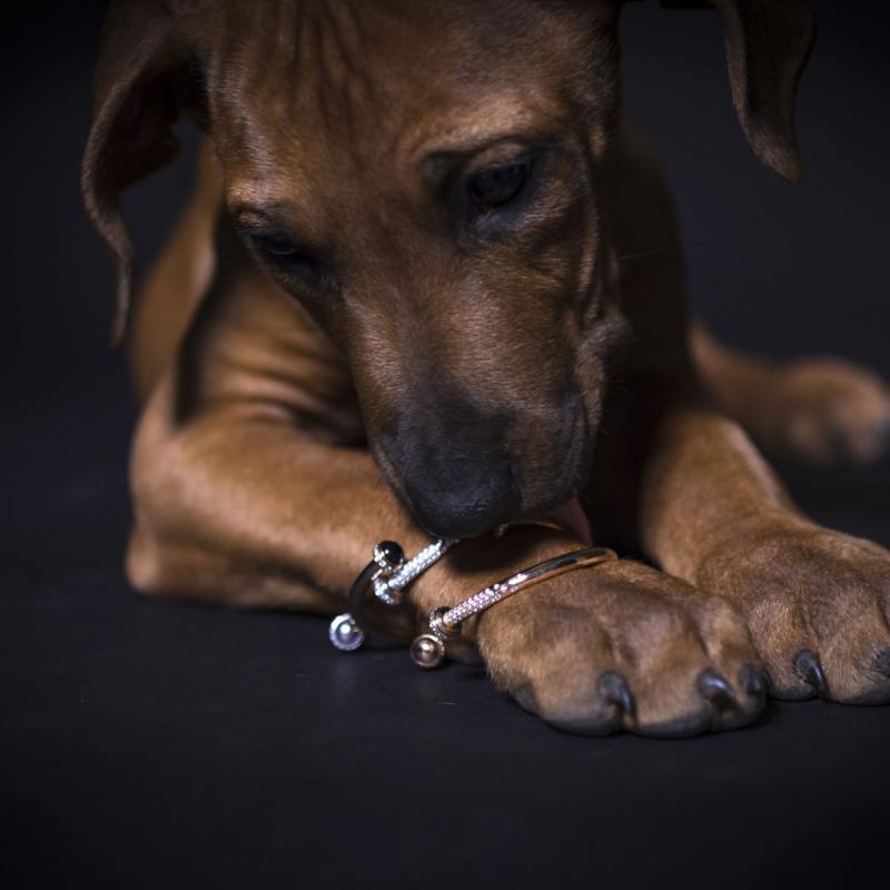 Bracelets Possession Piaget en or rose, diamants et pierres semi-précieuses, 11 800 € et 12 400 €. Tollet Joailliers – distributeurs exclusifs Belgique/Luxembourg.