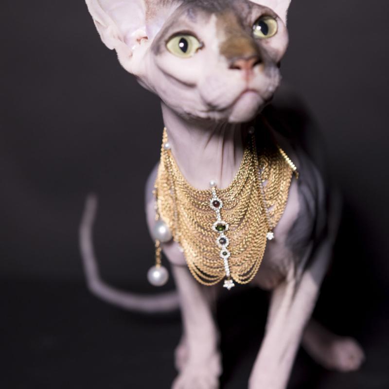 Plastron Daria multi barrettes en or blanc et diamants, Messika, 44.900€ .