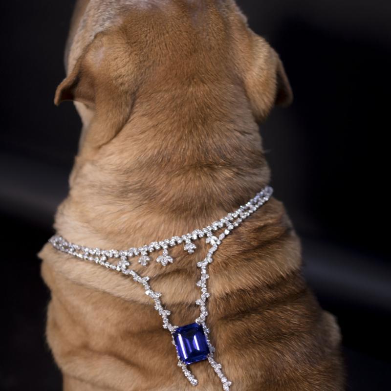 Collier Manalys avec tanzanite vivid blue de 70,38 cts, diamants et or blanc, 200 000 €.
